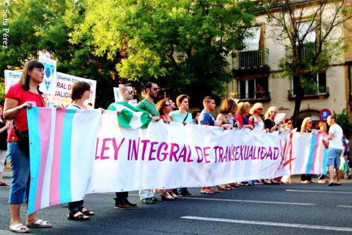 ley integral andalucia